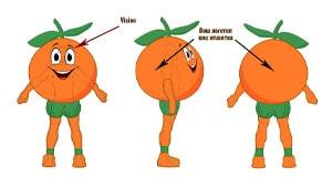 Эскиз ростовая кукла апельсин, костюм апельсина